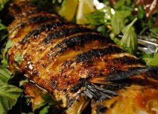 السمك البوري