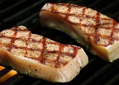 لحم القرش