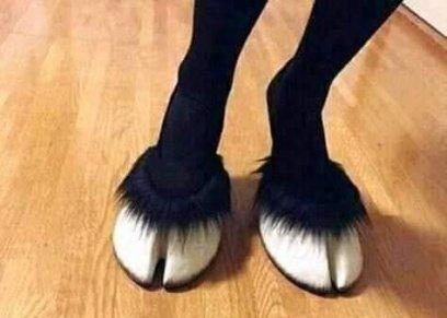 موضة جديدة حذاء رجل الماعز..تعرف على سعره