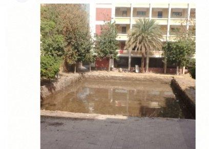 أولياء أمور مدرسة جواد على حسنى الرسمية يستغيثون: