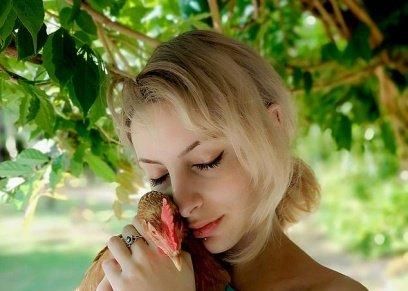 صداقة بين فتاة ودجاجة