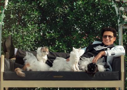 جلسة تصوير عمر برفقة القطط