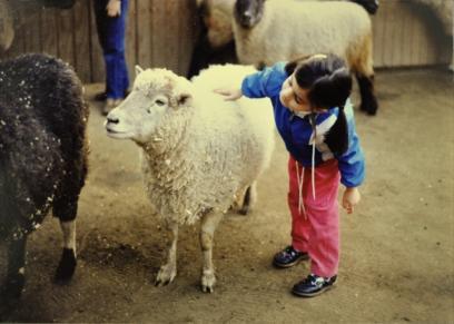 رأي علم النفس والدين في رؤية الطفل لمشهد ذبح أضحية العيد
