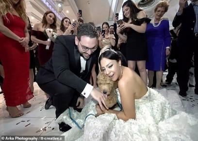 بالصور|  جابلها كلب..  عريس أمريكي يفاجئ عروسته يوم الزفاف ويحقق حلمها