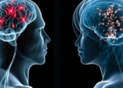دراسة: دماغ النساء أكثر شبابا عن الذكور بفارق 4 سنوات