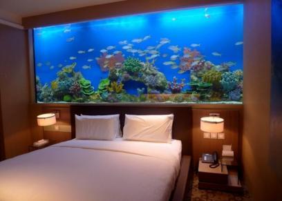 حوض سمك كبير خلف السرير