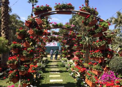 معرض الزهور