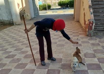 لي لي ترعى الكلاب