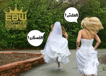أسبوع الزفاف المصري