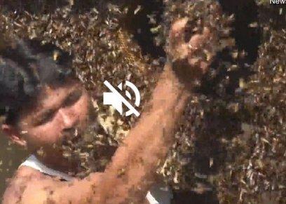 زوجان يعيشان وسط 10 ألاف نحلة