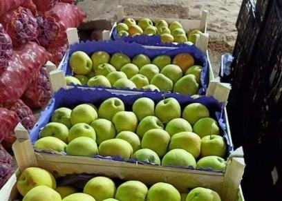 أسماء مالك تبيع الفاكهة