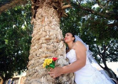 صورة من الزفاف الجماعي
