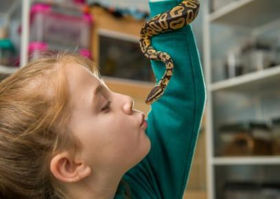 طفلة تحول غرفتها إلى حديقة حيوان