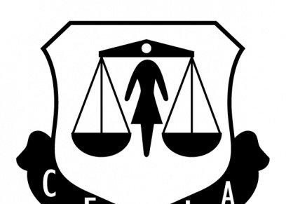 مؤسسة قضايا المرأة المصرية