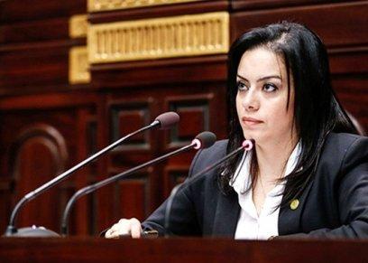 النائبة سيلفيا نبيل عضو الهيئة البرلمانية لحزب المصريين الأحرار، وعضو لجنة الخطة والموازنة بالبرلمان