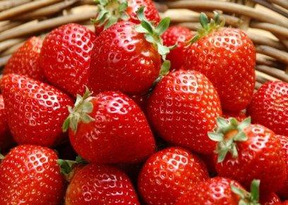 فوائد فاكهة الفراولة في رمضان