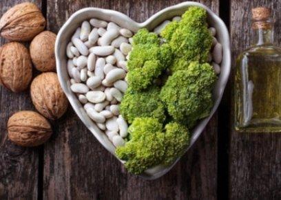 SEO  أسباب زيادة الكوليسترول