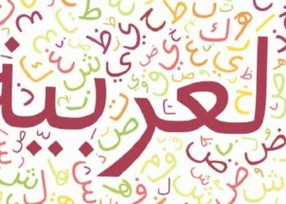 في اليوم العالمي لها.. اللغة العربية تنصف المرأة