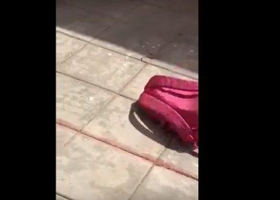 ثعبان يختبأ بحقيبة طالبة