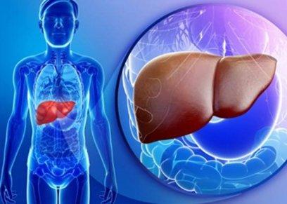 الحفاظ على الكبد من التليف
