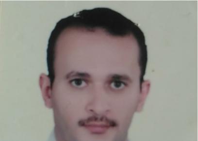 المهندس عماد حافظ