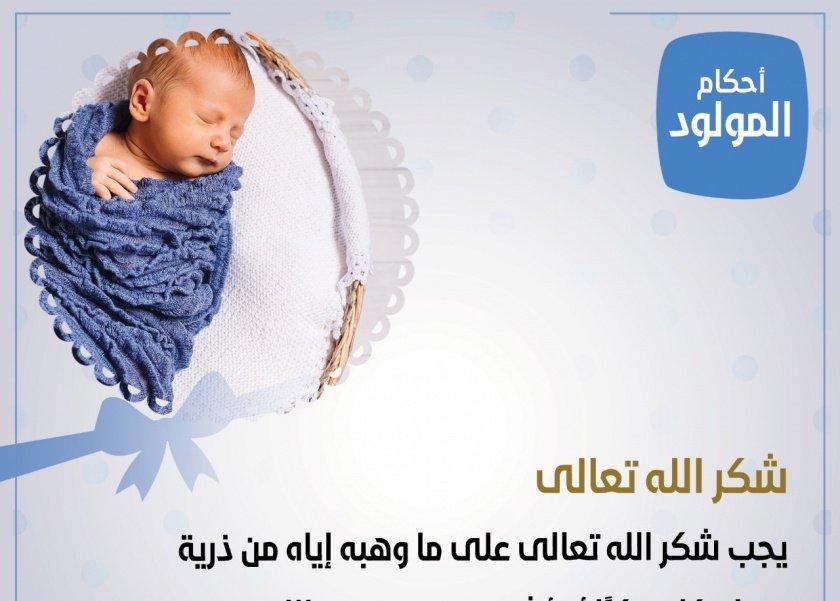 أحكام المولود