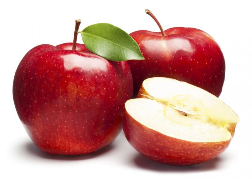 أخصائي تغذية: البنجر والتفاح لتقوية ذاكرة أبنك أيام الأمتحانات