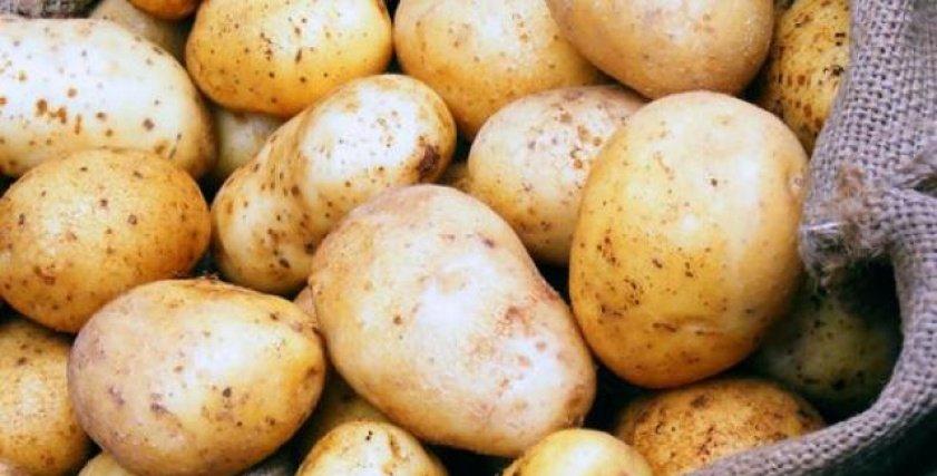 علماء: أغلبية البطاطس في العالم تعاني من اكتئاب شديد