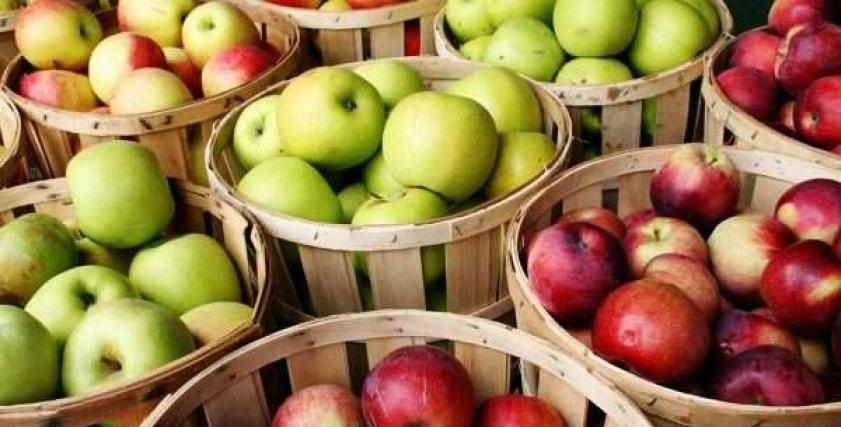 ريجيم التفاح