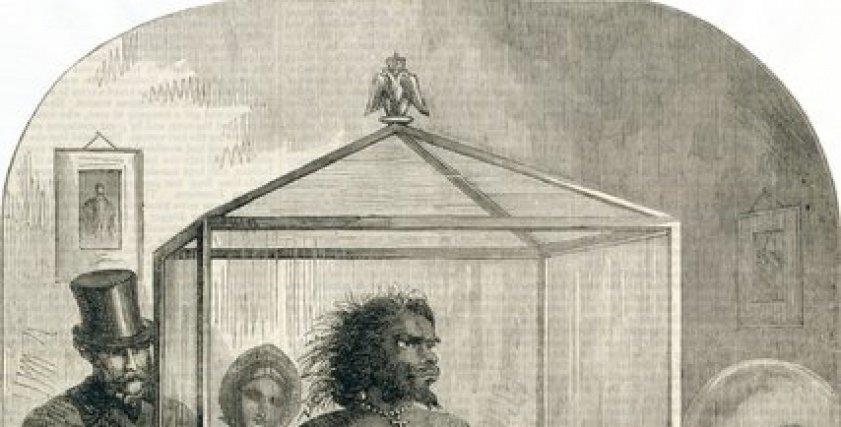 المرأة القردة