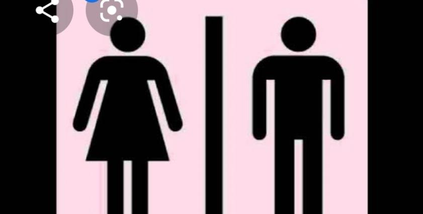 رحلة البحث عن الهوية.. صراع العابرون جنسيا «دوامة مبتتنهيش»