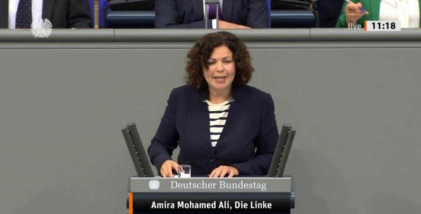 المحامية أميرة محمد على