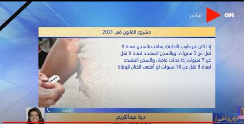النائبة دينا عبد الكريم