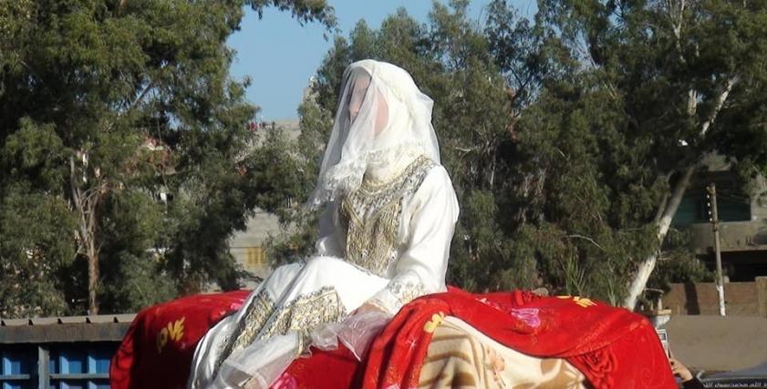 عروسة راكبة جمل